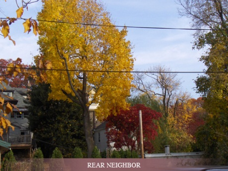 Elkins Park neighborhood